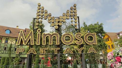 Mimosa-Pattaya - Thailand