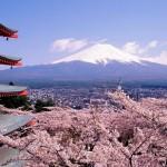 Paket Tour Jepang Murah 2017