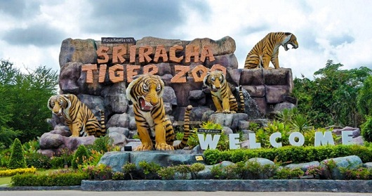 SRIRACHA TIGER ZOO PATTAYA -