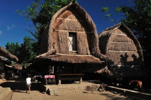 Desa Banyumulek