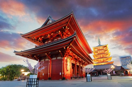 Tour Murah Jepang - Meiji Shrine