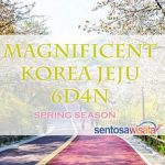 Paket Tour Korea Jeju Maret 2018