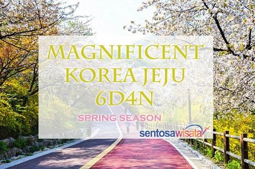 Tour Korea Spring Maret 2018