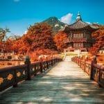 Paket Tour Korea Musim Gugur