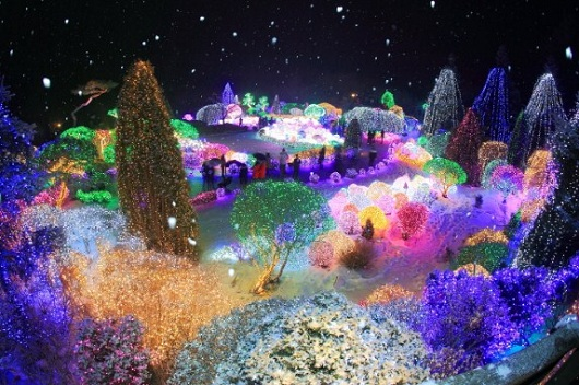 Paket Tour Korea Lighting Festival