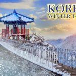 Paket Tour Korea Selatan Murah 2019