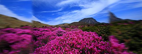Gunung Halla