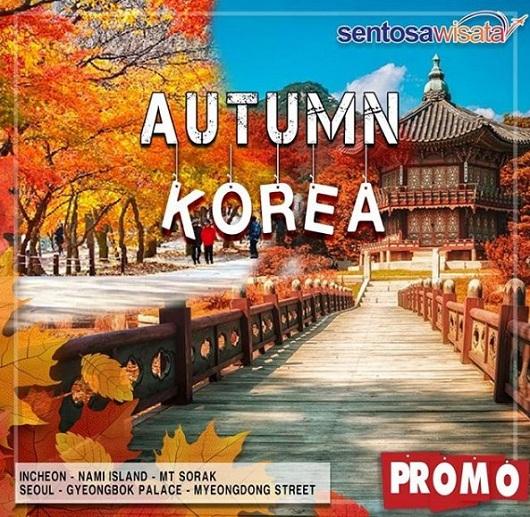 Korea Autumn 2019
