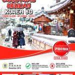 Paket Tour Korea Selatan Murah 2017