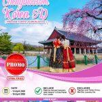 Paket Tour Korea Selatan Murah 2020